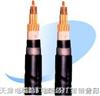 供应PTYA23-铁路信号电缆4芯,6芯,8芯,9芯,12芯,21芯 PTYAH PTYA PZYA PTYV PTYY PTY22 PTY23 (PZY02 PZY03