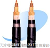 供应PTYA23-铁路信号电缆4芯,6芯,8芯,9芯,12芯, PTYAH PTYA PZYA PTYV PTYY PTY22 PTY23 (PZY02 PZY03