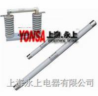 XRNP2-40.5/1高压限流熔断器
