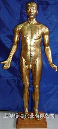 人体针灸穴位模型|铜人针灸模型