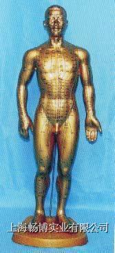 针灸穴位模型|针灸模型|全皮肤铜色人体针灸模型(68CM) CB207