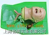 人体气管插管模型|经典气管插管训练模型 CBC-50