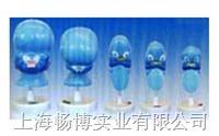 人体组织胚胎学模型|颜面发生模型 SMO029