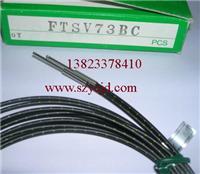 日本竹中TAKEX SEEKA光纤线传感器  FTSV73BC