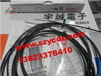 光纤传感器FT-SFM2