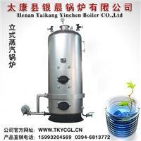 立式横水管蒸汽锅炉