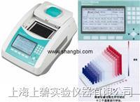 美国Labnet多功能梯度PCR仪(TC9600-G)