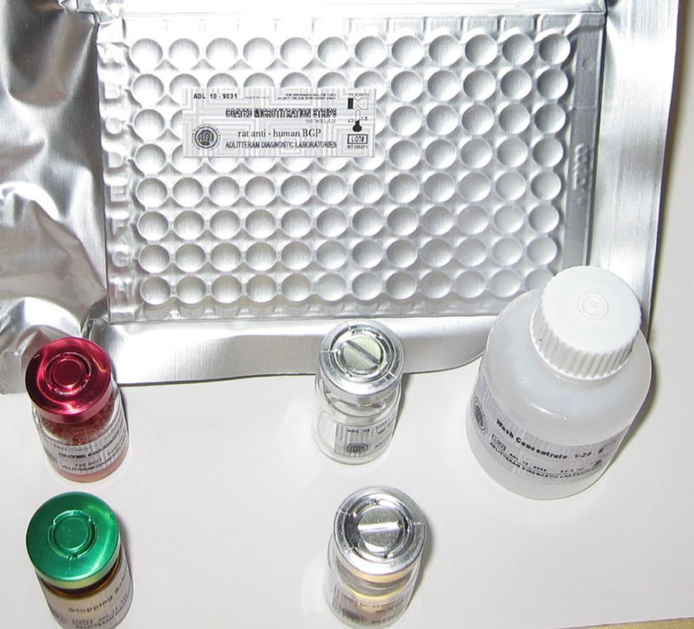 小鼠胰岛素样生长因子结合蛋白1(IGFBP-1)ELISA试剂盒