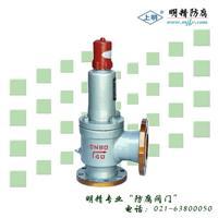 液化石油气安全阀、安全回流阀 A42F/Y