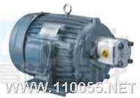 MP-1P-4H523+PLS MP-2P-4H523+K1P 定量齿轮泵电机组合 MP-1P-4H523+PLS MP-2P-4H523+K1P