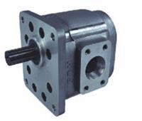 CBGb2080FJL-ST,齿轮泵 CBGb2080FJL-ST,