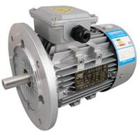 YE2-80M1-2,YE2-80M2-2,YE2-90L-4,YE2-100L2-4,YE2-112M-6,YE2-132S-6,高效节能电机 YE2-80M1-2,YE2-80M2-2,YE2-90L-4,YE2-100L2-4,YE2-11