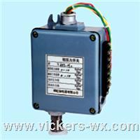 BZT-H   压力控制器   生产厂家 BZT-H