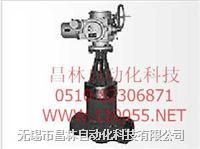 Z961Y   Z961Y-P54     Z961Y-P54-100V          电站闸阀  Z961Y   Z961Y-P54     Z961Y-P54-100V