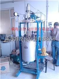 5L/10L釜盖升降型高压反应釜 WHFS -5L WHFS-10L