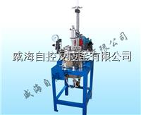5L实验室反应釜 WHFS-5L