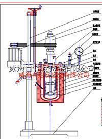5L實驗室用反應釜 WHFS-5L