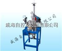 5L實驗高壓反應釜 WHFS-5L