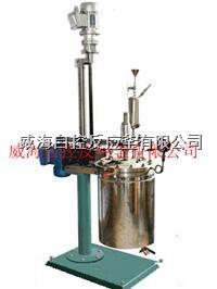 實驗用反應釜5L WHFS-5L