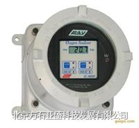在線氫中氧分析儀  EC2000D