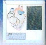 心脏传导系电动模型 SME07