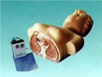 触电急救模型|NT-1  NT-1