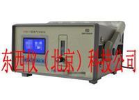 便携式氢气分析仪   wi96396