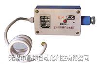 本安型温度传感器 KGX-WI  KGX-WI