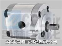 2GG9P30 2GG9P33 高压齿轮泵 2GG9P30 2GG9P33