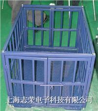 牲畜电子地磅 SCS