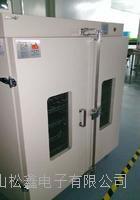 双门烤箱/烘箱/干燥箱 SXH-600