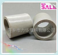 Lihua-陶瓷拉西环填料宣传册