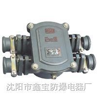 BHD20矿用隔爆型接线盒、母线盒 BHD20