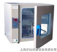 电热恒温培养箱/恒温培养箱/DH2500 DH2500