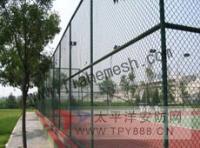 防护网-桥梁/防眩网(钢板网)