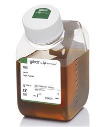 特級胎牛血清(北美血源) GIBCO 16000-044 500ml