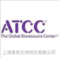 PC-12 大鼠腎上腺嗜鉻細胞瘤細胞 CRL-1721