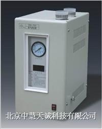 高纯度氮气发生器 型号:ZH/SPN-500 ZH/SPN-500