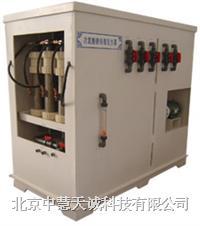 ZHJYW-1000型次氯酸钠发生器1000g/h ZHJYW-1000