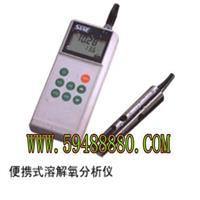 FDROXYGEN-2100  便携式溶解氧分析仪/便携式溶解氧测定仪 型号:FDROXYGEN-2100 FDROXYGEN-2100