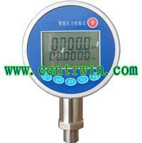BKSR3000   智能压力校验仪  型号:BKSR3000 BKSR3000