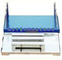 流挂性测定仪 型号:TYL-QAG1 TYL-QAG1