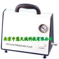 无油真空泵 型号:DP-10/10A