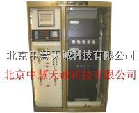NF-405石化、煤化工过程分析系统  NF-405