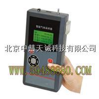 WZU/3070-A智能气体采样器/烟尘测定仪  WZU/3070-A