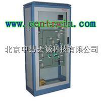 ZH6283在线氢气纯度分析仪/氢气分析仪  ZH6283