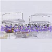 二级生物样品安全转移箱 意大利  型号:BIKS-102 BIKS-102
