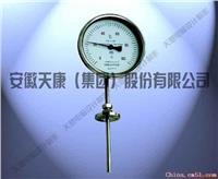 萬向型雙金屬溫度計 WSS-484表盤直徑Φ100mm