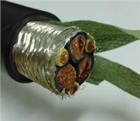 電力電纜,變頻電纜 ZR-BPVVPP2