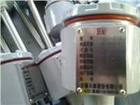 防爆熱電阻 WZP2-440PT100